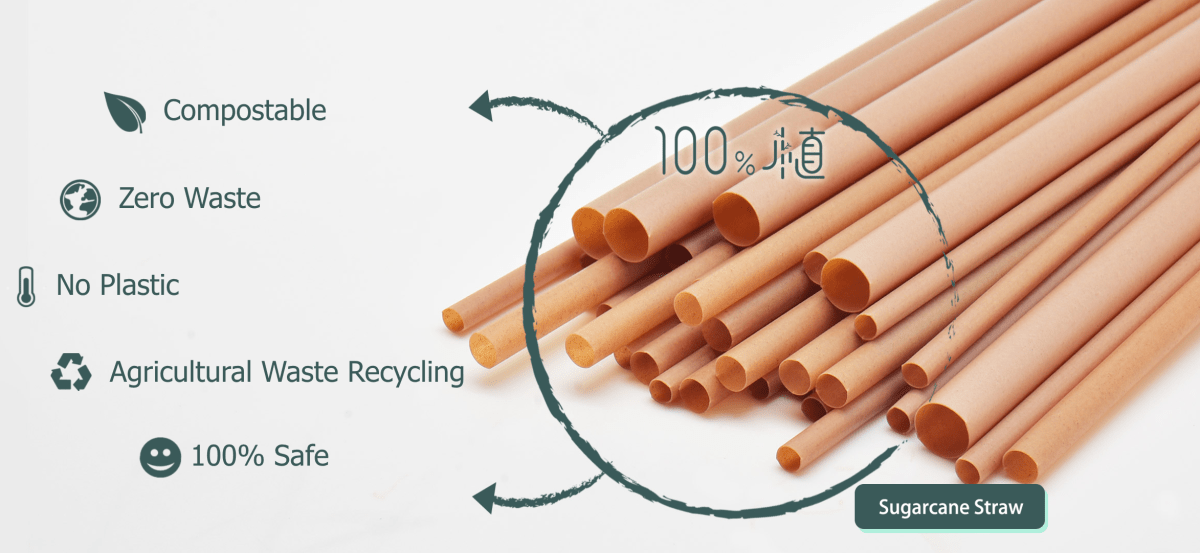 How to get rid of single use plastic straw, with natural raw materials:  sugarcane fiber — Plastic Ethics