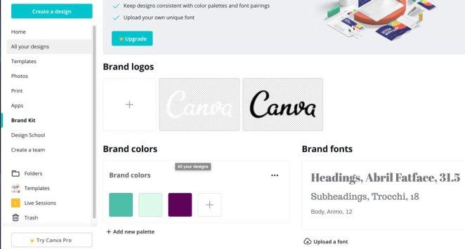 brand-kit-canva-free-example.jpg