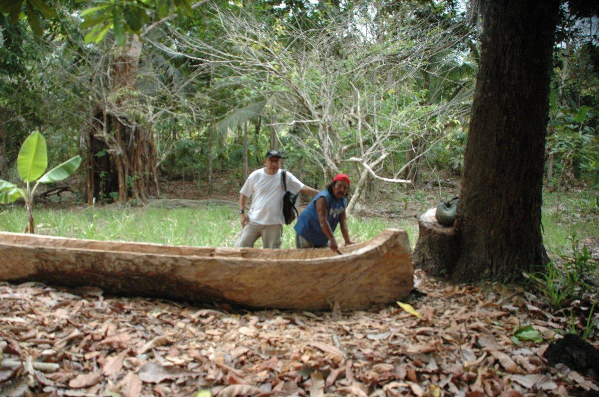 Abril 2014. En el bosque de Usdup.Cebaldo (izq), Cesarín y el   urgaggor   que el amigo cuidó desde semilla. Urgaggor: término en dulegaya para nombrar al cayuco o bote de madera, usado para navegar en la mar.