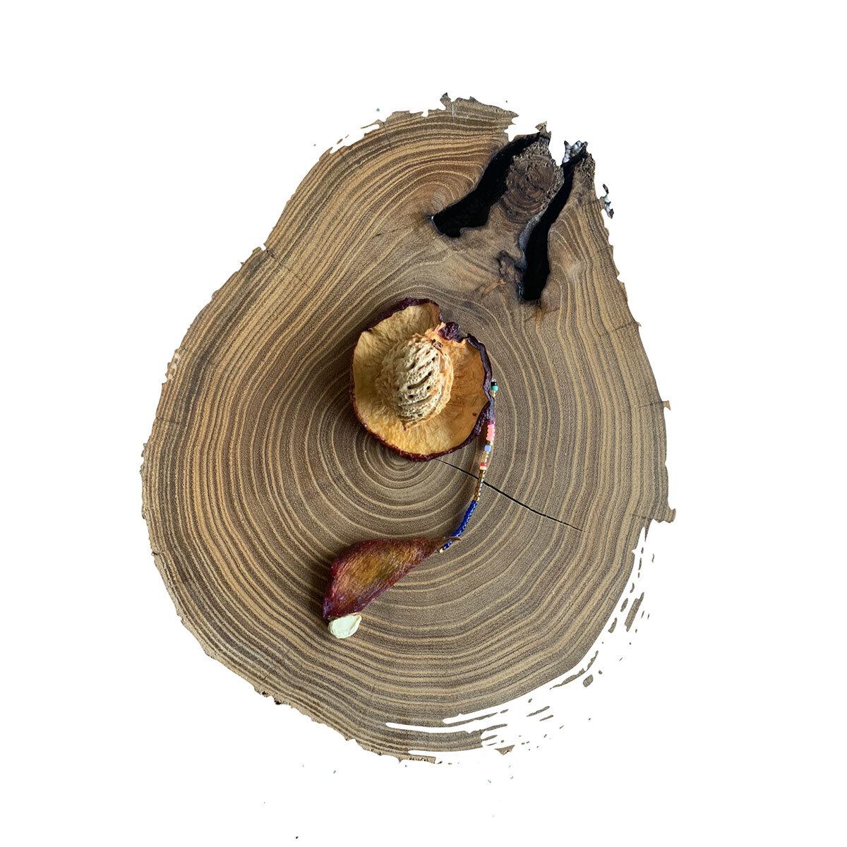 """""""...Y de allí  sabbigwaa , """"corazón del árbol"""", y el nombre de  Nana Ologwadule , - uno de los nombres que los kuna dan a la Madre Tierra - la madre generosa que hace germinar las semillas..""""  - Ilustración de Ani Ventocilla King"""
