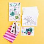Succulent Cactus Watercolor Painting For Beginners Easy Art Painting Mini Kit Diy Pink Puddle Studio
