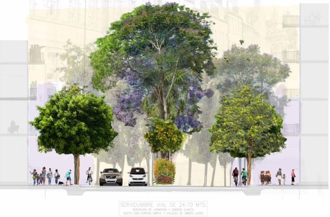 Sección de calle de Boulevard Panamá - Diseño por el Arq. Luis Alfaro