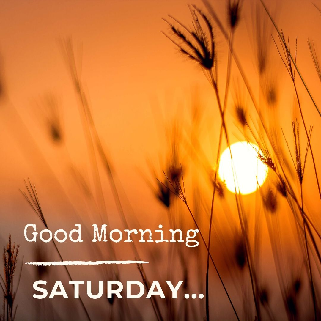 Good Morning Saturday Image Hd 1 full HD free download.