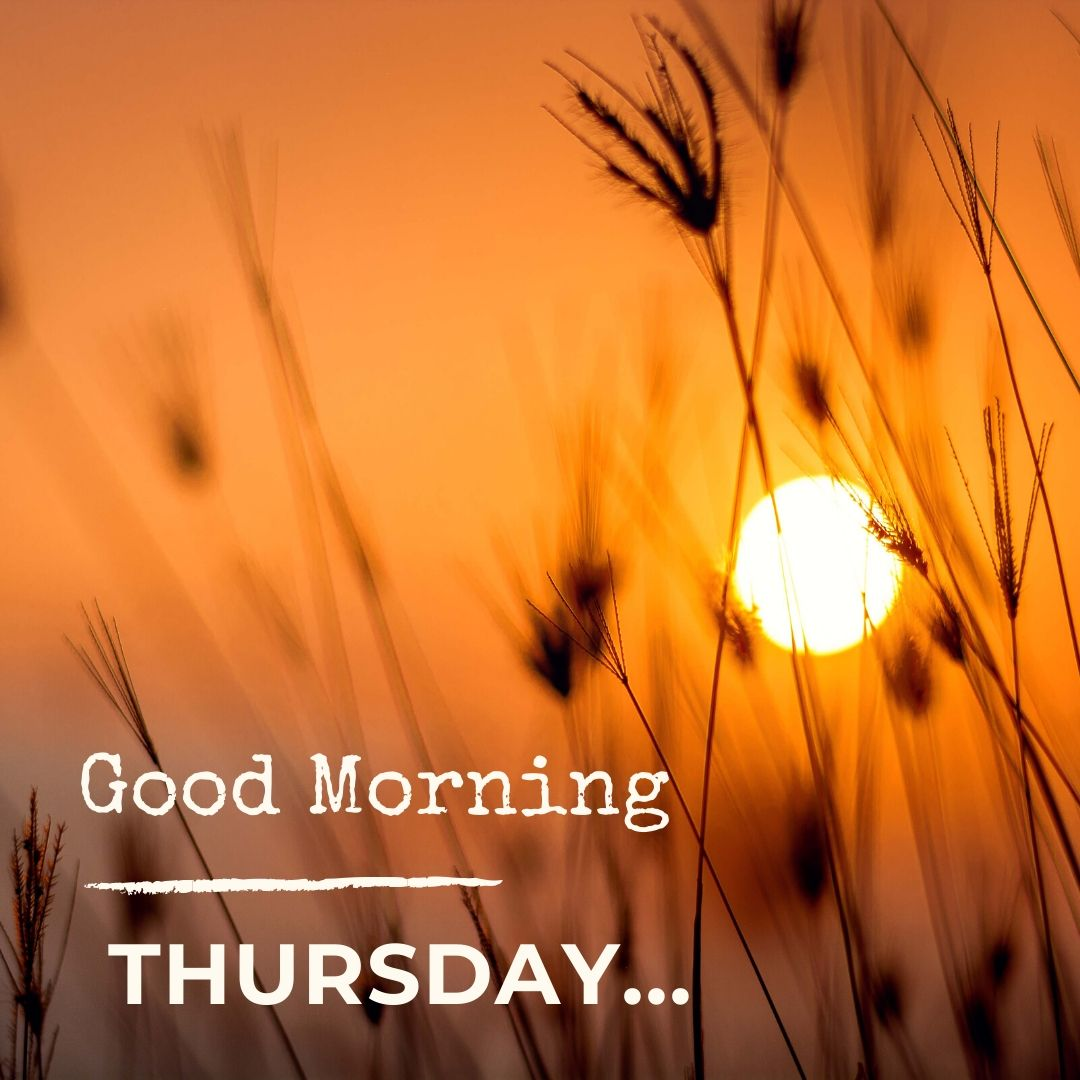 Good Morning Thursday Image Hd 1 full HD free download.