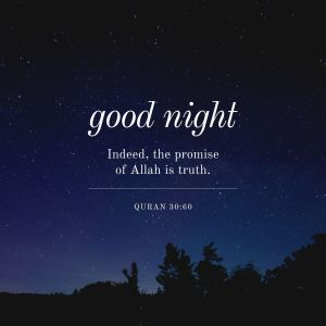 Good Night Indeed The Promise of Allah I s Truth full HD free download.