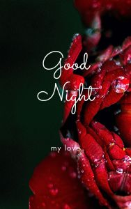 Good Night My Love Pic full HD free download.