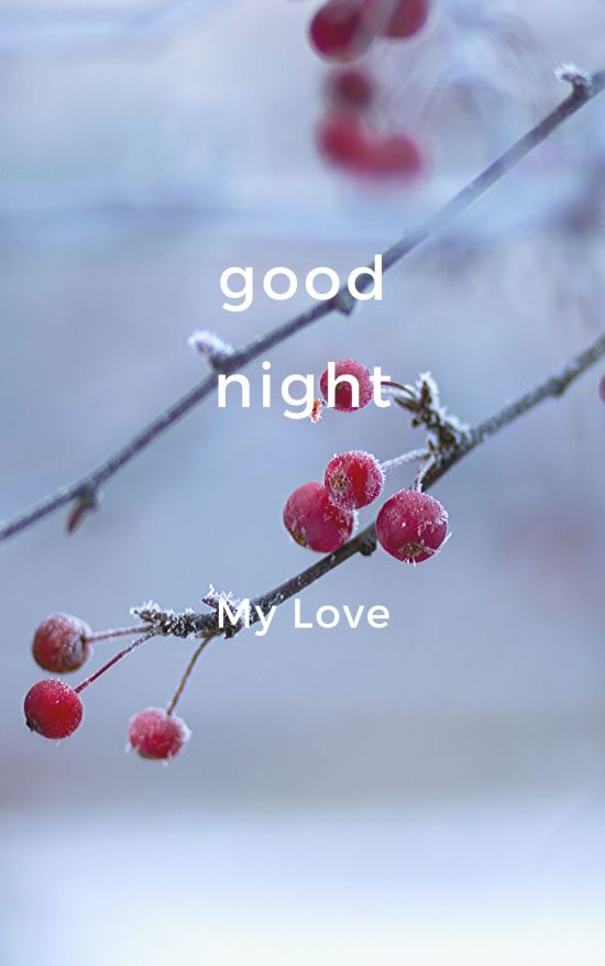 Good Night My Love pic hd