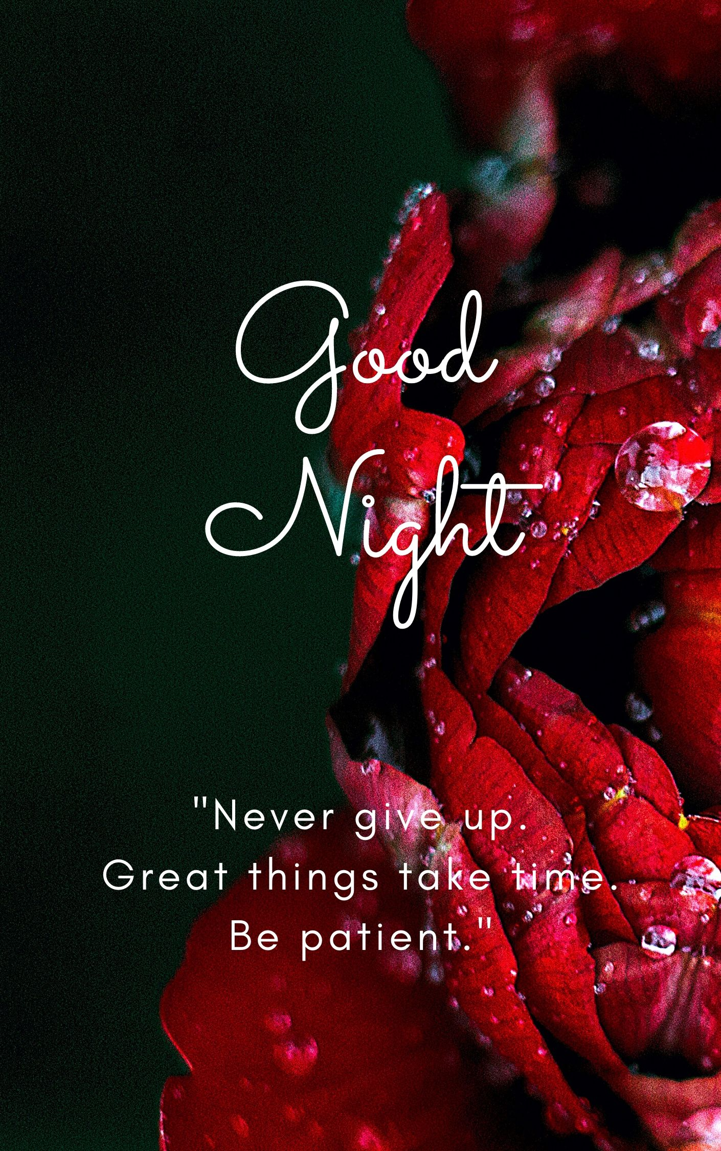 Good Night Quote Pic Never give up. Great things take time. Be patient full HD free download.