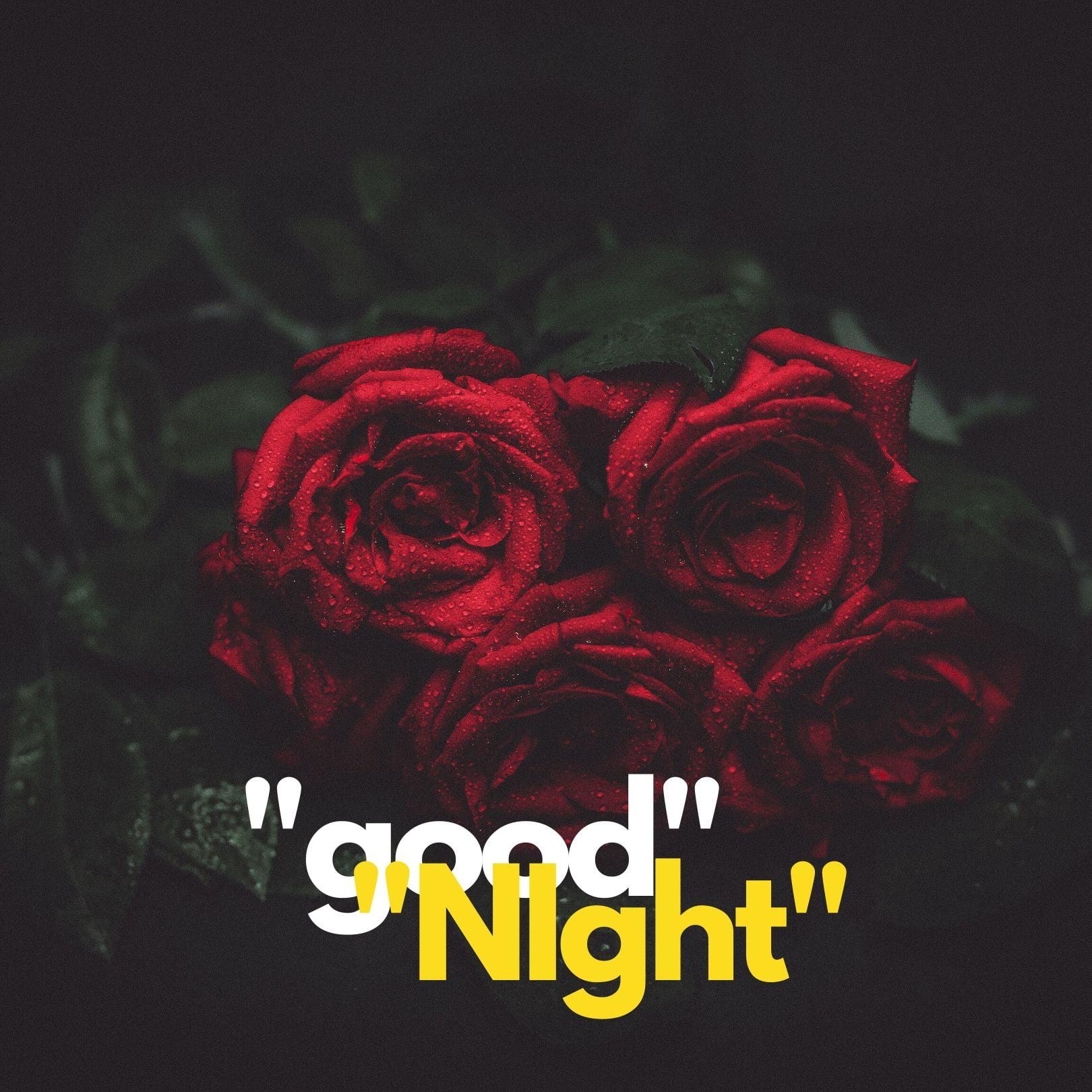 Good Night Rose full HD free download.