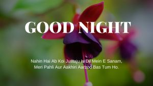 Good Night Shayari In hindi image full HD free download.