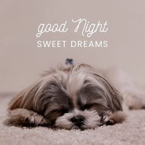 Good Night Sweet Dreams Images full HD free download.