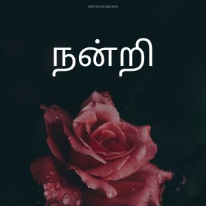 Thank You Images in Tamil HD full HD free download.