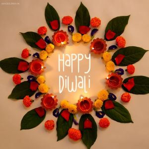 Diwali Flower full HD free download.