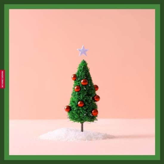 Christmas Tree Hd Images