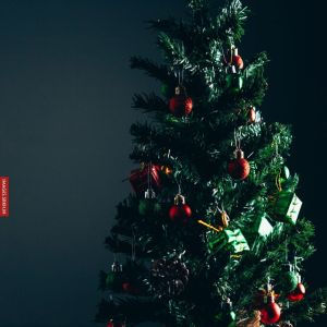 Christmas Tree Images full HD free download.