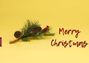 Hd Images Of Merry Christmas full HD free download.