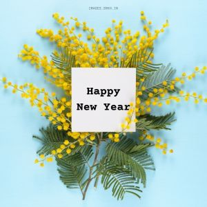 Happy New Year Greeting Card full HD free download.