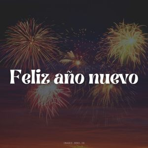 Happy New Year In Spanish full HD free download.