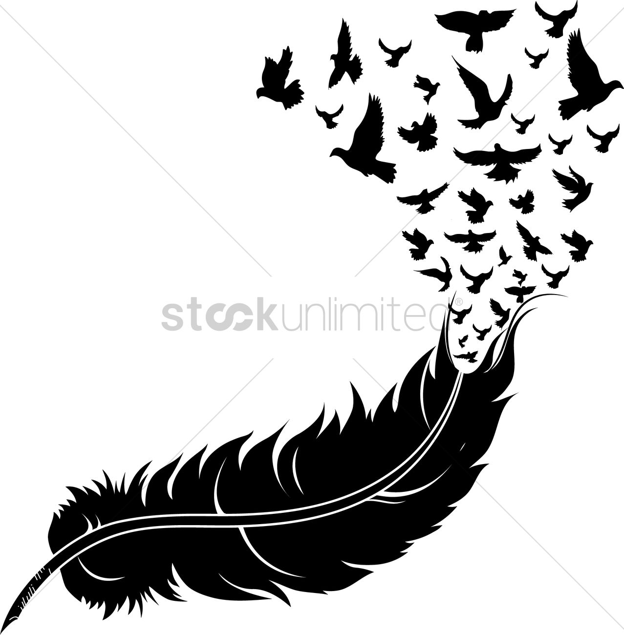 Feather With Birds Vector Image