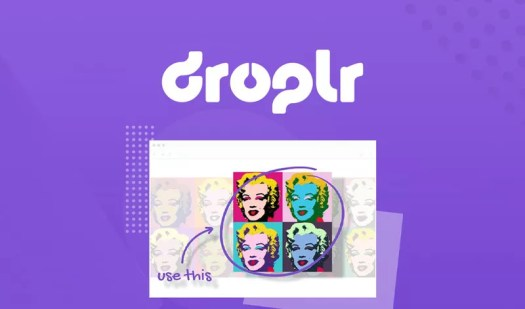 Droplr review