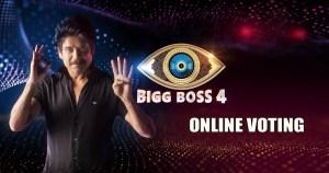 bigg boss 4 Online Voting
