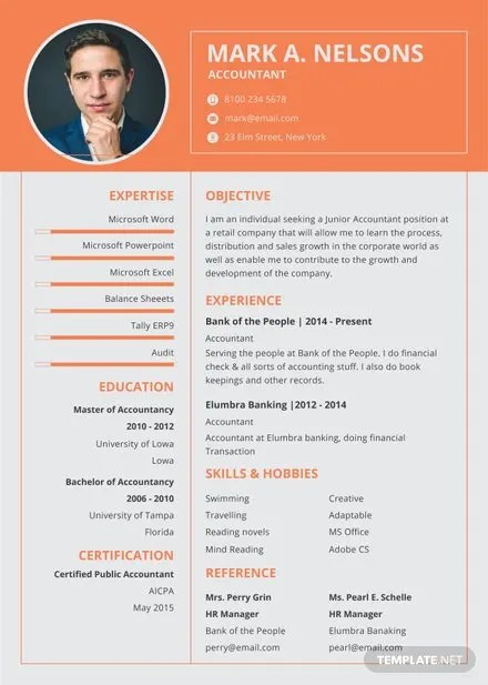 Free Experienced Accountant Resume Format Free Templates
