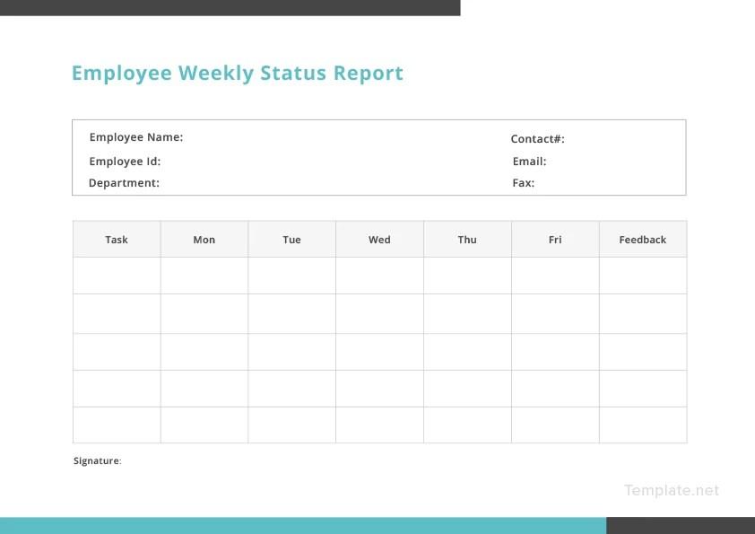 Employee Weekly Status Report Template In Microsoft Word
