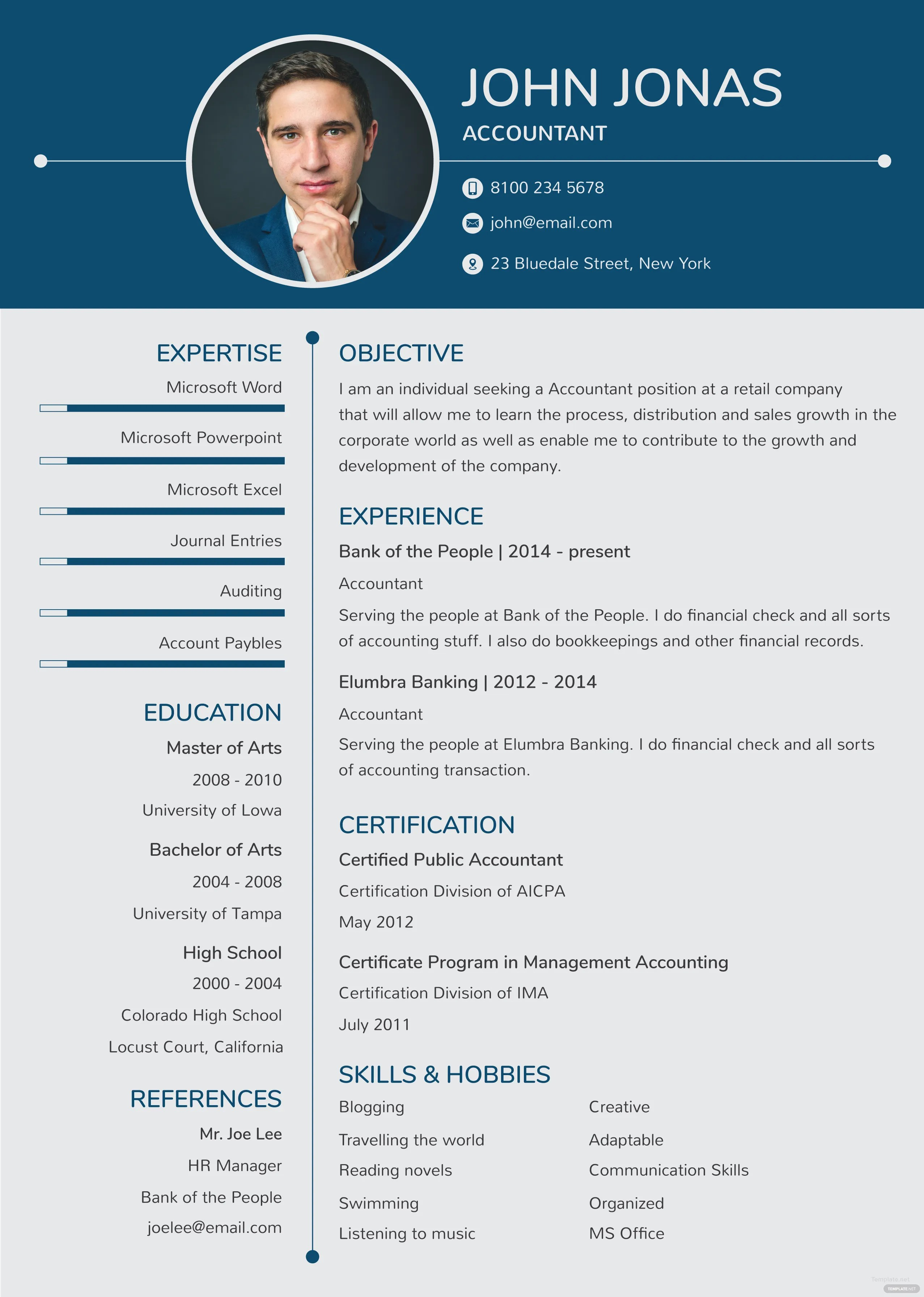 Free Banking Resume And Cv Template In Adobe Photoshop