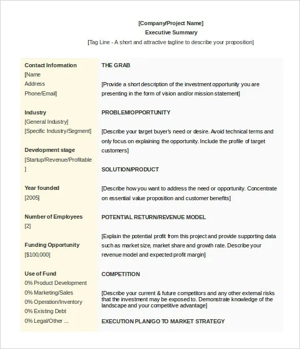 Executive Summary Template Microsoft Word  Free Download