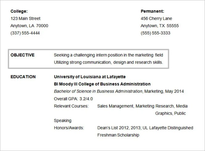 resume objectives 46 free sample example format - Marketing Resume Objective Statement