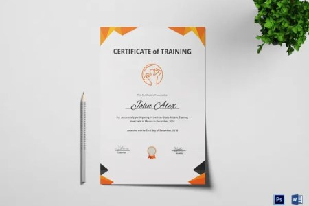 31  Medical Certificate Templates   PDF  DOC   Free   Premium Templates Physical Fitness Training Certificate Photoshop Template
