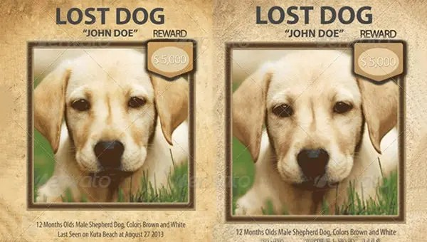 11 psd lost dog flyer templates free