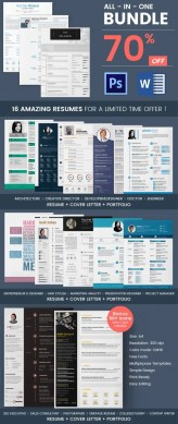 Creative Resume Template   79  Free Samples  Examples  Format     Professional Resume Bundle for  30  16 Resume Bundle