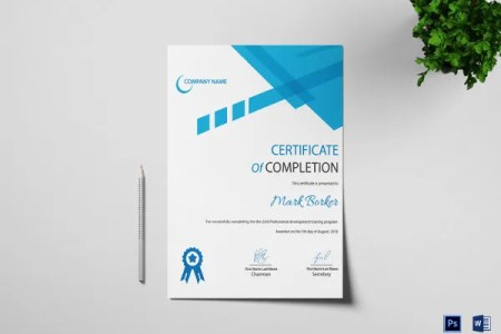 28  Professional Certificate Templates   DOC  PDF   Free   Premium     professional completion certificate template  Download Now