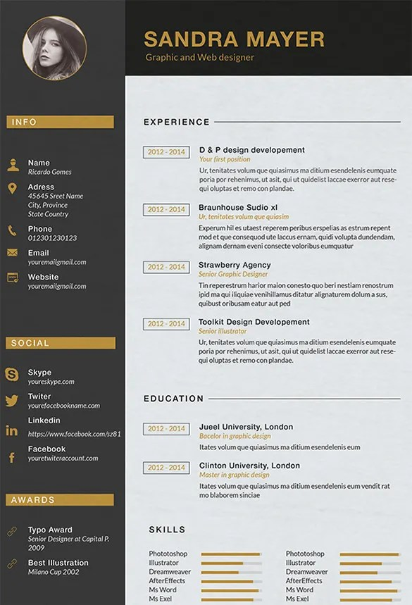 Designer Resume Template 9 Free Samples Examples Format  Graphic Designer Resume Samples