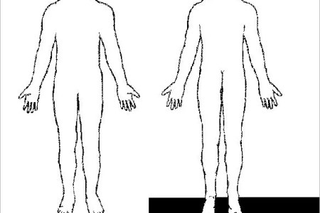 Anime Boy Body Outline Path Decorations Pictures Full Path