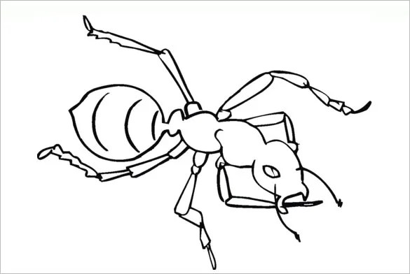 10 ant templates crafts & colouring pages  free