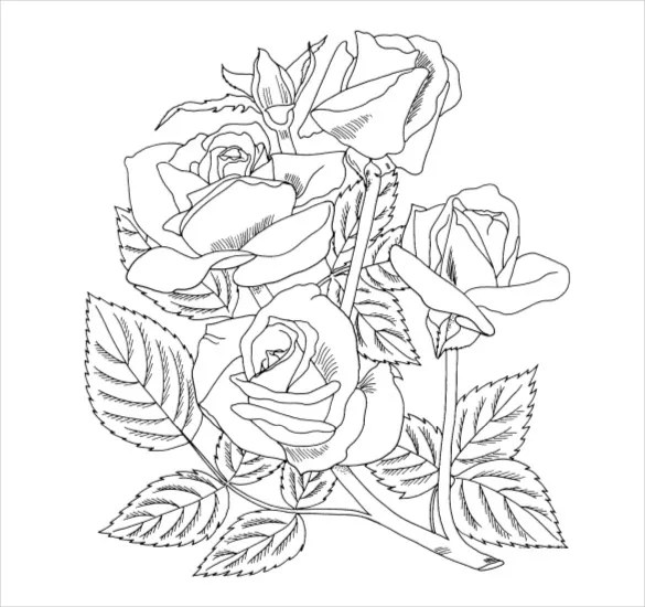 21 flower coloring pages psd ai vector eps  free