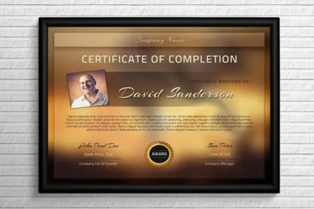 38  Completion Certificate Templates   Free Word  PDF  PSD  EPS     Download Modern Completion Certificate Template PSD Format