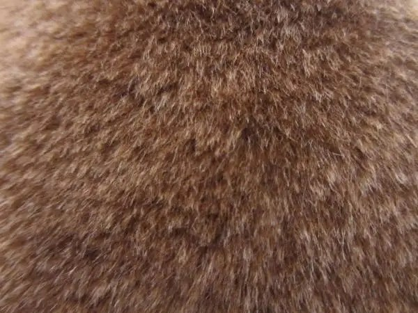 8 Fur Textures Free PSD PNG Vector EPS Format