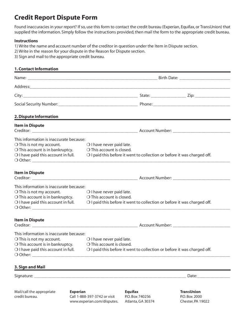 fake credit report template