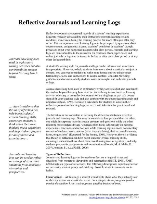 21+ Daily Journal Entry Templates - PDF  Free & Premium Templates