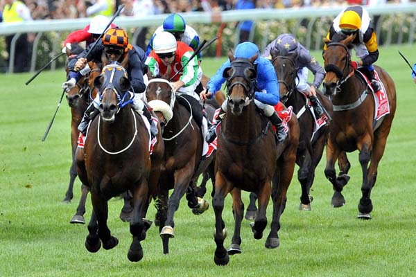 Shocking wins the 2009 Melbourne Cup