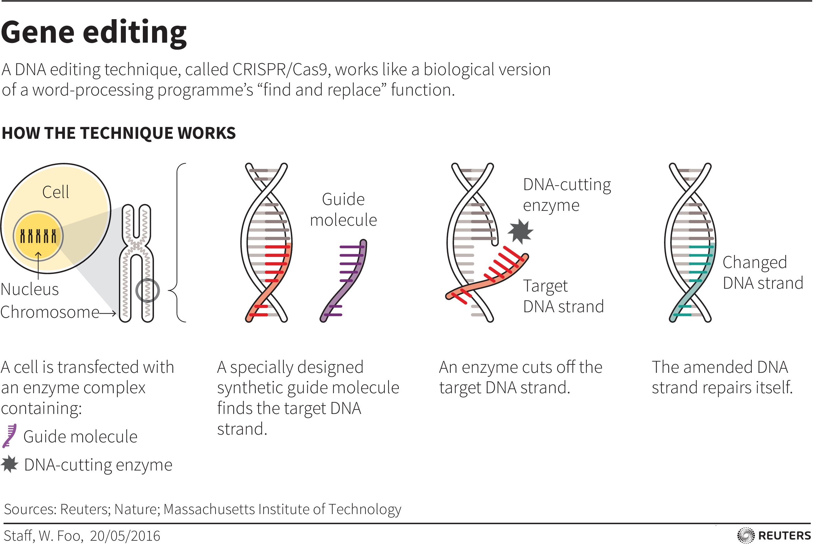 CRISPR gene-editing controversy shows old ideas about East and West still  prevail