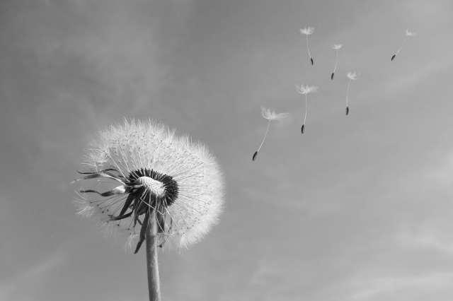 El suicidio: una realidad desconocida