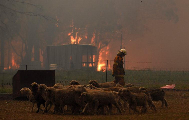 A rural fire service crew attempts to protect a property in New South Wales in December 2019. I