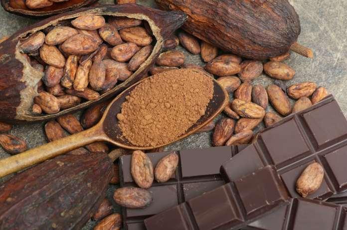 Chocolat aux fèves de cacao