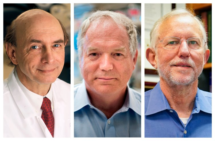 The Discovery of Hepatitis C: This combination of photos shows, from left, Harvey J. Alter, Michael Houghton and Charles M. Rice, who jointly won the Nobel Prize for medicine on Oct. 5, 2020, for their discovery of the hepatitis C virus. The major source of liver disease affects millions worldwide. (Rhoda Baer/National Institutes of Health, Richard Siemens/University of Alberta, AP Photo/John Minchillo)