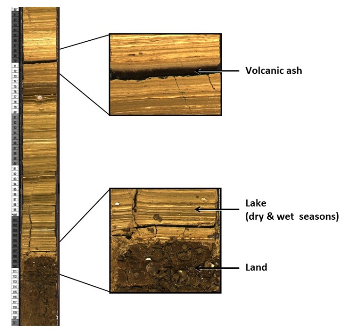 cross-section of part of the core