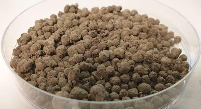 A petri dish full of a dry, soil-like powder.